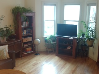 Luxury 2 bedrooms in Boston's Jamaica Plain