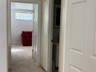 Spacious and well lighted basement unit
